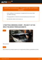 PDF med trinn for trinn-veiledning for bytte av Peugeot 206 2a/c Radiator