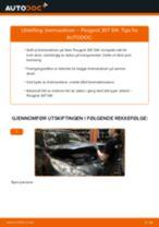 PDF med trinn for trinn-veiledning for bytte av PEUGEOT 307 SW (3H) Bremseskiver