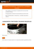 Bytte Fjærbenslager foran og bak Renault Scénic IV: handleiding pdf