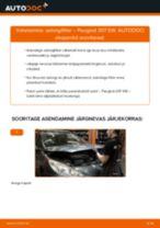 Kuidas vahetada ja reguleerida Pidurisilinder: tasuta pdf juhend