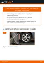 Hátsó lengéscsillapító-csere Peugeot 307 SW gépkocsin – Útmutató