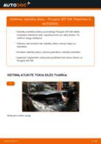 Kaip pakeisti Peugeot 307 SW stabdžių diskų: priekis - keitimo instrukcija