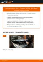 Peugeot 307 Sedanas remonto ir priežiūros instrukcija