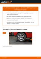 Automechanikų rekomendacijos SEAT Seat Ibiza 6l1 1.4 16V Amortizatoriaus Atraminis Guolis keitimui