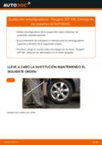 Cómo cambiar: amortiguadores de la parte trasera - Peugeot 307 SW | Guía de sustitución
