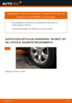 Cómo cambiar: rótula de suspensión de la parte delantera - Peugeot 307 SW | Guía de sustitución