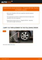 Replacing Struts PEUGEOT 307: free pdf