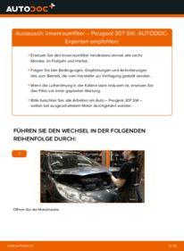 Wie der Wechsel durchführt wird: Innenraumfilter 1.6 HDI 110 Peugeot 307 SW tauschen