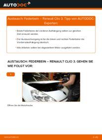 Wie der Wechsel durchführt wird: Stoßdämpfer 1.5 dCi Renault Clio 3 tauschen
