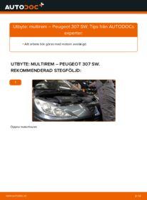 Så byter du Multirem på 1.6 HDI 110 Peugeot 307 SW