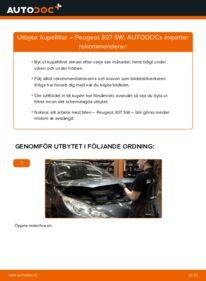 Så byter du Kupefilter på 1.6 HDI 110 Peugeot 307 SW