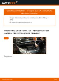 Slik bytter du Drivstoffilter på PEUGEOT 307