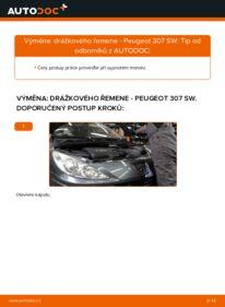 Jak provést výměnu: Klinovy zebrovany remen na 1.6 HDI 110 Peugeot 307 SW