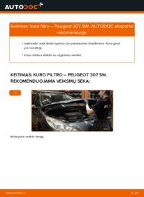 Kaip atlikti keitimą: 1.6 HDI 110 Peugeot 307 SW Kuro filtras