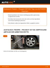 Wie der Wechsel durchführt wird: Federn 1.6 HDI 110 Peugeot 307 SW tauschen