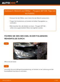 Wie der Wechsel durchführt wird: Ölfilter 1.6 HDI 110 Peugeot 307 SW tauschen