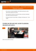 Montage Zubehörsatz, Scheibenbremsbelag AUDI A4 (8EC, B7) - Schritt für Schritt Anleitung