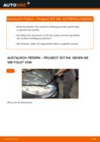 Anleitung: Peugeot 307 SW Federn vorne wechseln