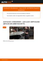 Anleitung zur Fehlerbehebung für AUDI Zündkerzen