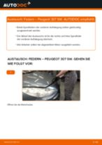 Wie Peugeot 307 SW Federn vorne wechseln - Anleitung