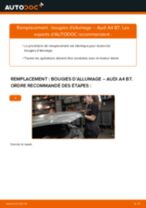 Tutoriel PDF étape par étape sur le changement de Bougies d'Allumage sur AUDI A4 (8EC, B7)