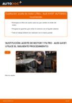 Manual online sobre el cambio de Filtro de aceite para motor por su cuenta en AUDI A4 (8EC, B7)