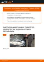 Cómo cambiar y ajustar Amortiguador PEUGEOT 307: tutorial pdf