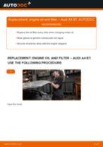 Replacing Brake caliper seals kit AUDI A4: free pdf