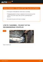 Bilmekanikers rekommendationer om att byta PEUGEOT Peugeot 307 SW 1.6 16V Stötdämpare