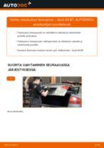 Kuinka vaihtaa takaluukun kaasujousi Audi A4 B7-autoon – vaihto-ohje