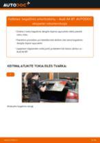 Kaip pakeisti Audi A4 B7 bagažinės amortizatorių - keitimo instrukcija