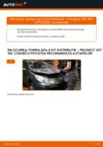Manual intretinere PEUGEOT pdf