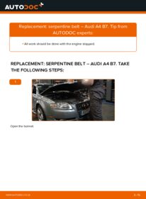 How to carry out replacement: Poly V-Belt on 2.0 TDI 16V Audi A4 B7