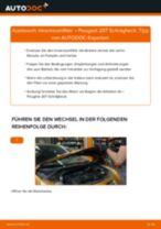 Schritt-für-Schritt-PDF-Tutorial zum Innenraumfilter-Austausch beim PEUGEOT 207 (WA_, WC_)