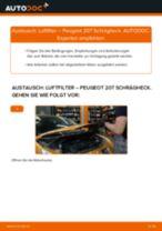 Ratschläge des Automechanikers zum Austausch von PEUGEOT Peugeot 207 WA 1.6 HDi Thermostat