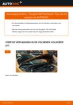 PDF handleiding voor vervanging: Ontstekingsspoel PEUGEOT 207 (WA_, WC_)