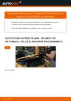 Cómo cambiar: filtros de aire - Peugeot 207 hatchback | Guía de sustitución