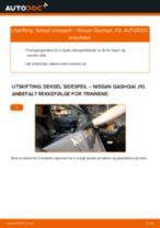 Mekanikerens anbefalinger om bytte av NISSAN Nissan Qashqai j10 2.0 dCi Allrad Sidespeil