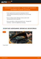 Kuidas vahetada ja reguleerida Lambda-andur: tasuta pdf juhend