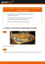 Autószerelői ajánlások - PEUGEOT 207 (WA_, WC_) 1.6 HDi Lengéscsillapító cseréje