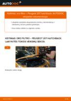PEUGEOT 207 Varikliukas, priekinio stiklo valytuvai keitimas: nemokamas pdf