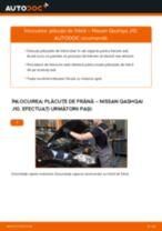 Manual intretinere NISSAN pdf