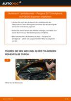 Tipps von Automechanikern zum Wechsel von PEUGEOT Peugeot 207 WA 1.6 HDi Zündkerzen