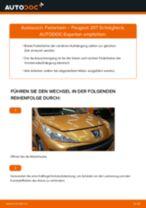 Wie Peugeot 207 Schrägheck Federbein vorne wechseln - Anleitung