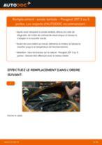 Notre guide PDF gratuit vous aidera à résoudre vos problèmes de PEUGEOT Peugeot 208 CC 1.2 Bougies d'Allumage
