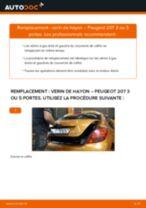 Comment changer : verin de hayon sur Peugeot 207 3 ou 5 portes - Guide de remplacement