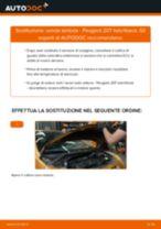 Come cambiare e regolare Lambda sensore benzina e diesel: guida gratuita pdf