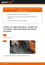 Byta stötdämpare bak på Peugeot 207 hatchback – utbytesguide
