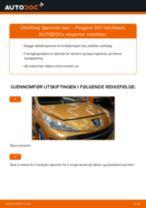 Hvordan bytte og justere Fjærbein PEUGEOT 207: pdf håndbøker