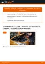 Hvordan bytte Hjullagersett bak og foran PEUGEOT 207 (WA_, WC_) - guide online